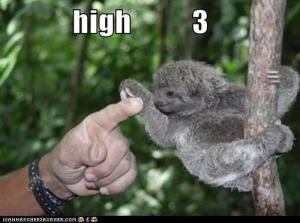High three me sloooth :D